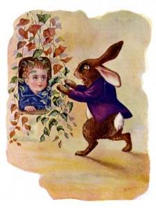 walter-y-los-conejos-12