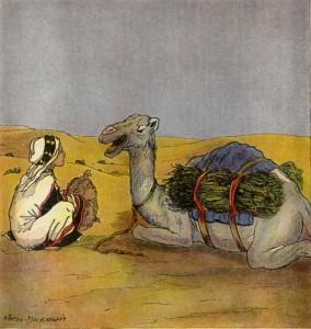 Abdul descansa con su camello