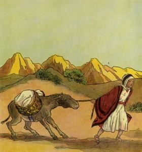 Hammed y su burro