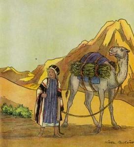 Abdul y su camello