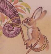 conejo-forzudo-2