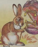 conejo-forzudo-4