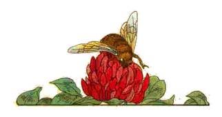 La abeja que no quería trabajar